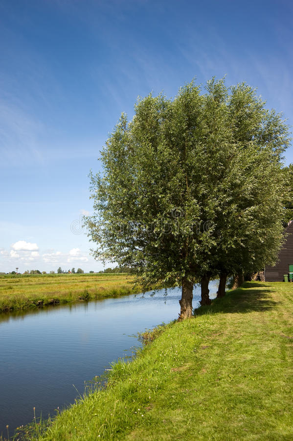 Download Green Fields Near Amsterdam, Netherlands Stock Images - Image: 17315164