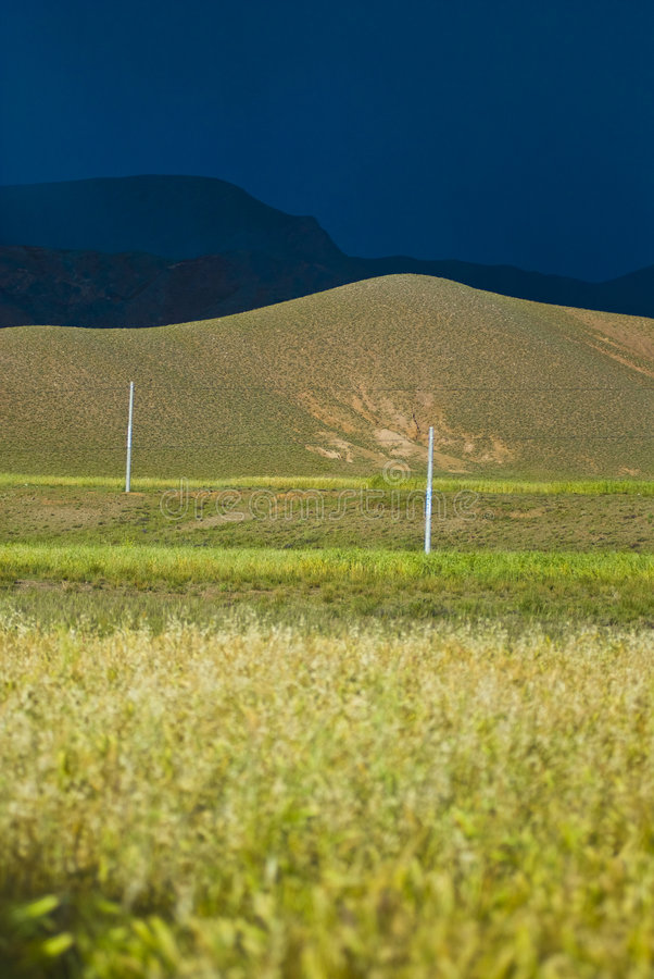 Green fields and rolling hills stock images