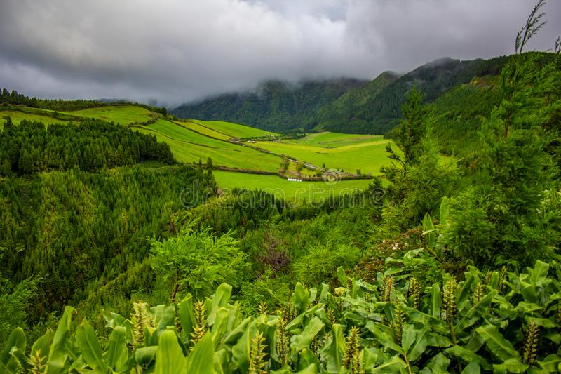 Green fields and trees in a valley near Sete Cidades Lakes, Sao Miguel Island, Azores, Portugal.  stock photography