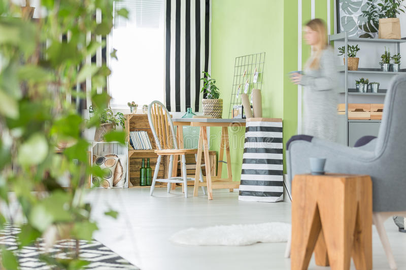 Green flat with decorative plants stock photos