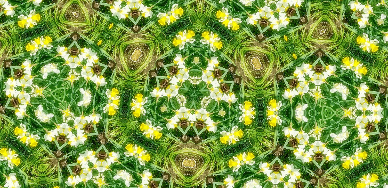Spring green flora kaleidoscope pattern background royalty free stock photo