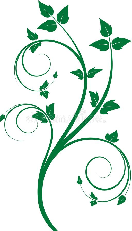 Download Green Floral Ornament Royalty Free Stock Photos - Image: 10328918