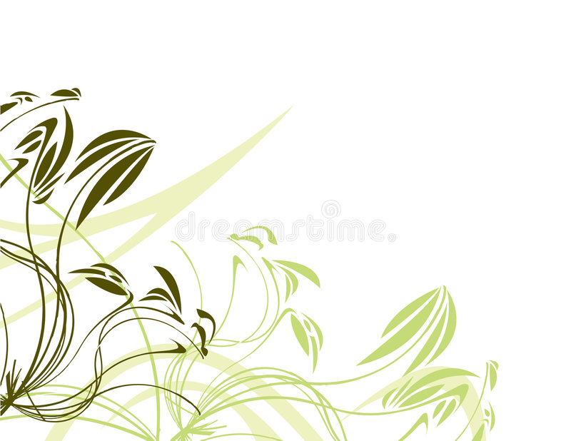 Green floral with white backgr royalty free illustration