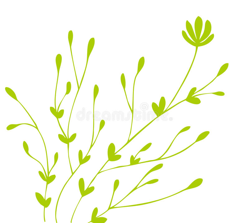 Green flower and bud pattern vector illustration