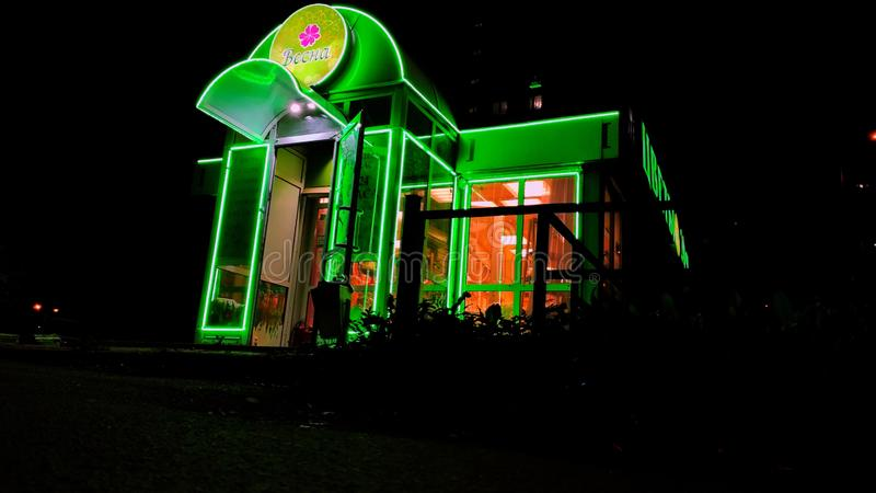 Green fluorescent flower store with neon sign royalty free stock photography