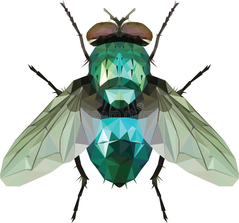 Green Fly triangle. Isolated on white, illustration royalty free illustration