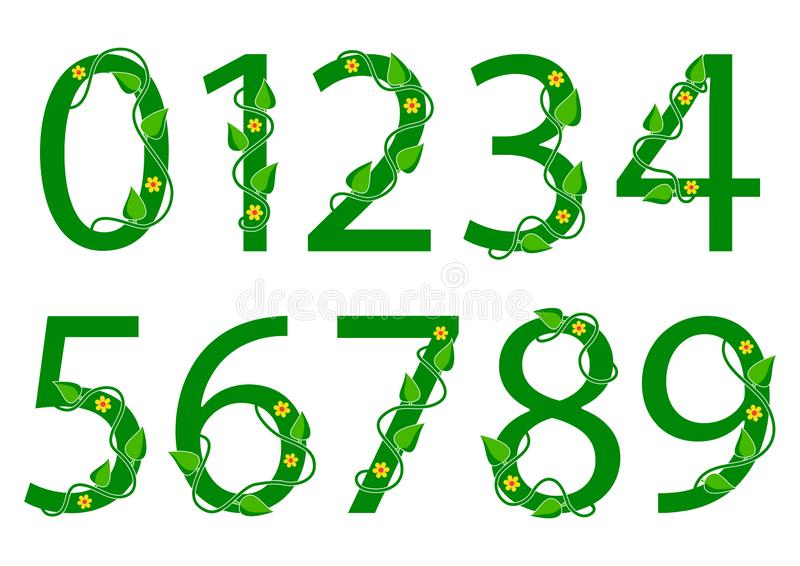 Green font numbers from 1 to 0 with leaves and flowers. Nature style. Vector. Illustration stock illustration