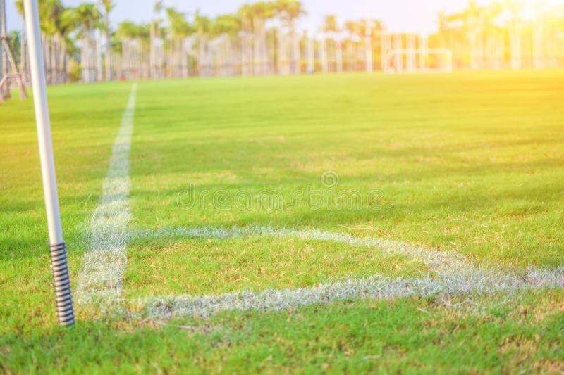 Green football field in the evening light.  stock photography