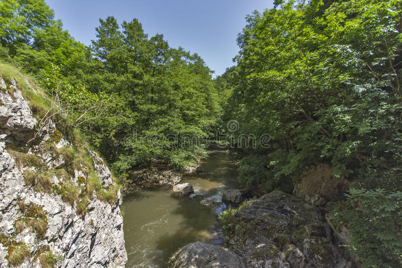 Green forest around Erma River Gorge. Bulgaria stock images