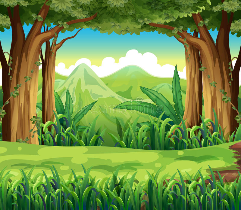 The green forest vector illustration