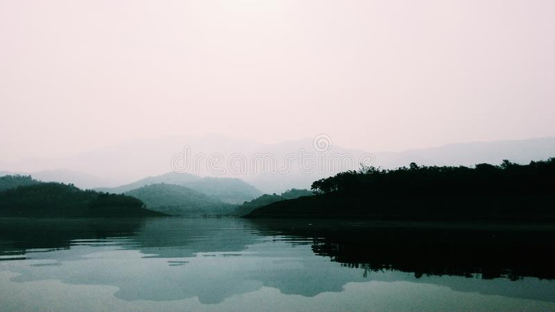 Green Forest Near Body of Water stock photos