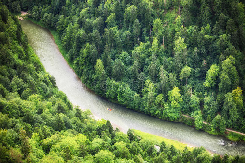Green forest with river, aerial view as background. Green forest with river, aerial view as background royalty free stock photo