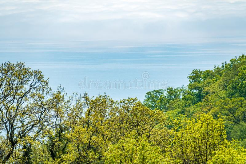 Green forest on the sea shore and the sea in the distance. Copy space background stock image
