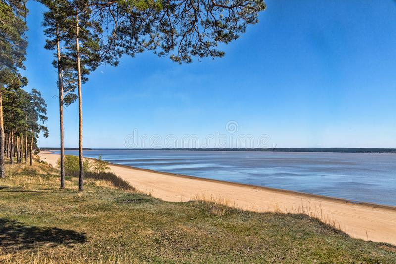 Green forest on the shore of the lake, sand on the shore. Summer royalty free stock images