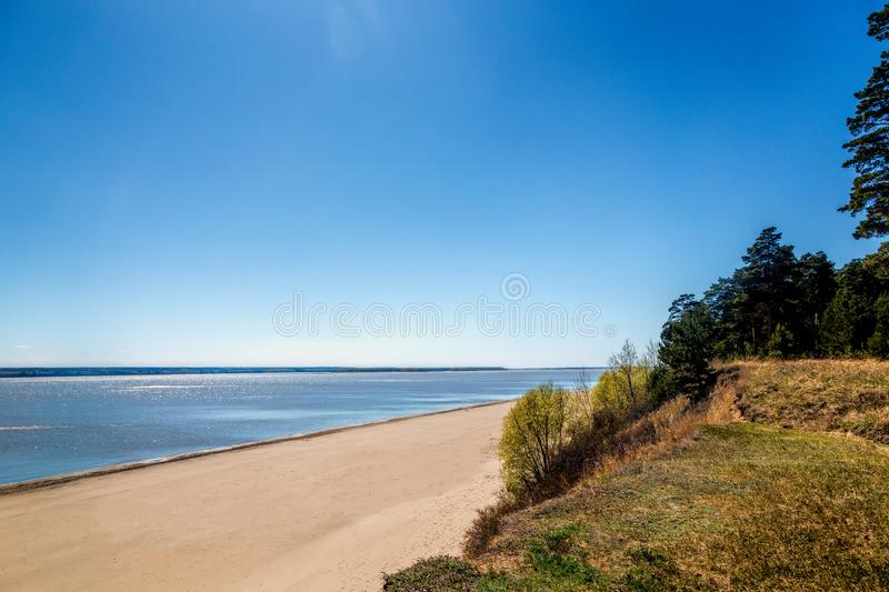 Green forest on the shore of the lake, sand on the shore. Summer stock photo