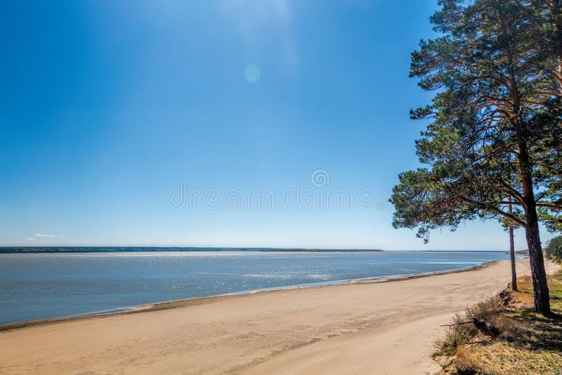 Green forest on the shore of the lake, sand on the shore. Summer royalty free stock photography