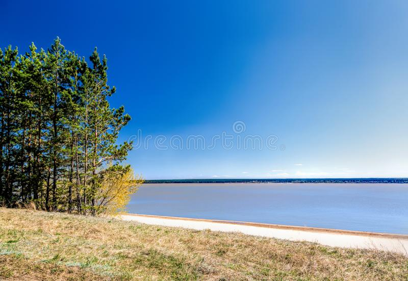 Green forest on the shore of the lake, sand on the shore. Summer royalty free stock image
