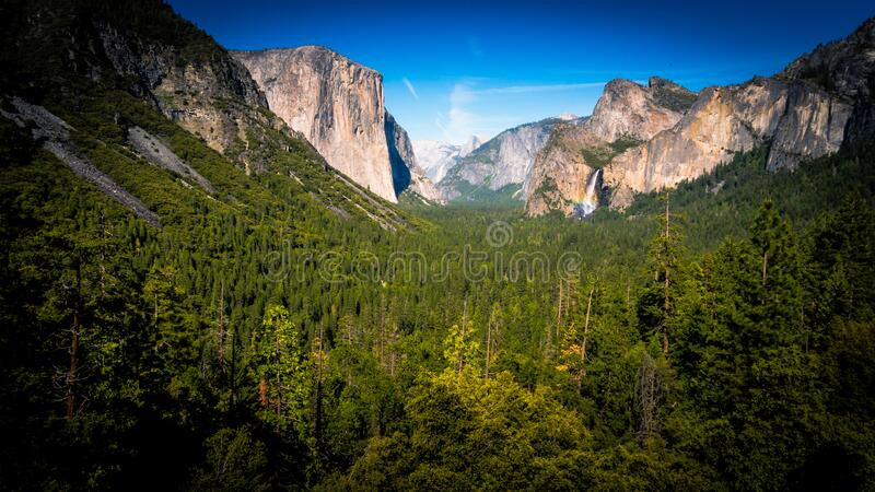 Green Forest Trees Between Beige Rock Formation Under Clear Sky during Daylight royalty free stock photography