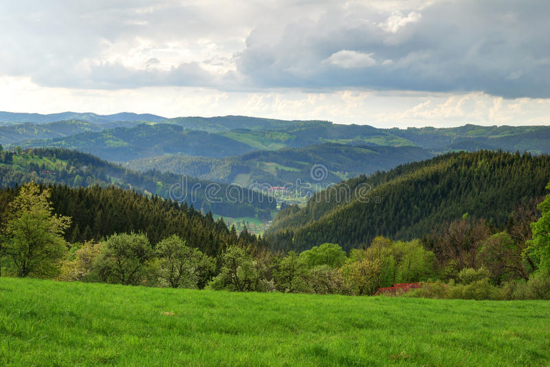 Green forest and valley landscape. Green forest and valley highland landscape royalty free stock images