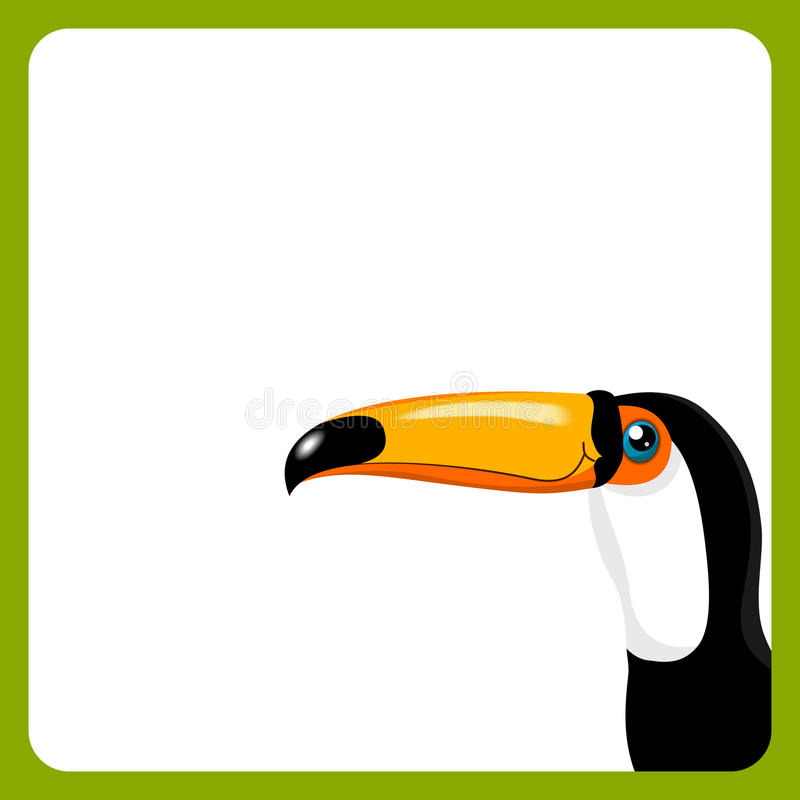 Download Green frame with toucan stock vector. Image of head, frame - 26960101