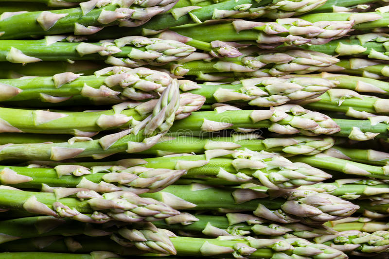 Green and fresh asparagus. Lying in lines stock photos