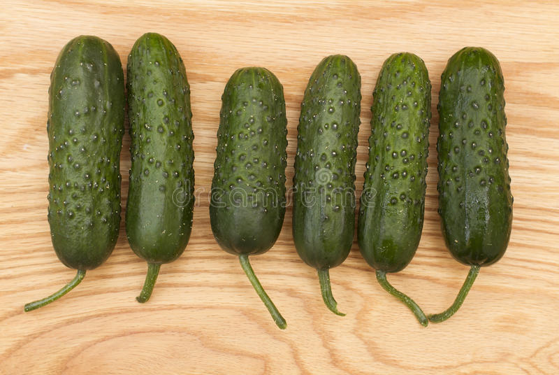 Green fresh cucumber on a wooden board stock photo