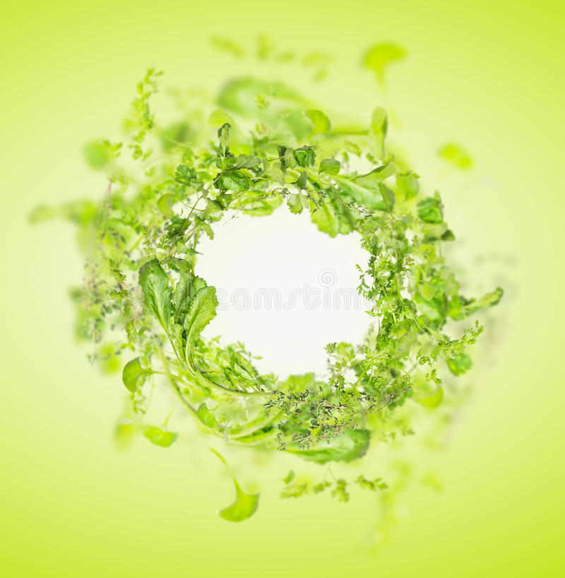Green fresh herbs on white wooden background, frame. Green fresh herbs mix on white wooden background , top view royalty free stock images