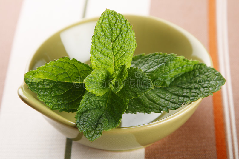 Green Fresh Mint Leaves In Bowl On Tablecloth Stock Images