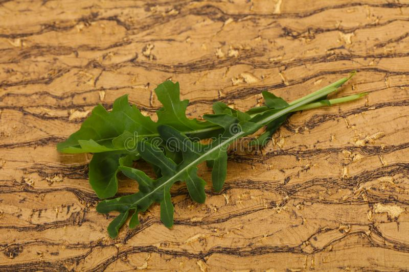 Green fresh Rocket leaves. Green fresh ripe Rocket leaves stock images