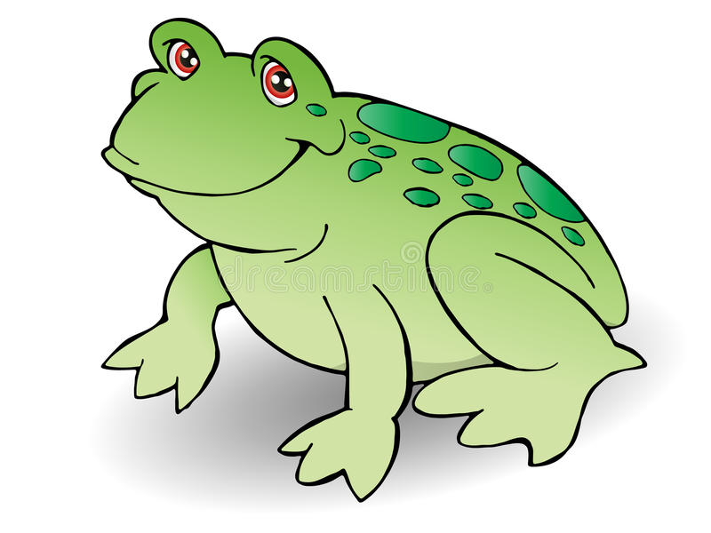 Green frog stock illustration