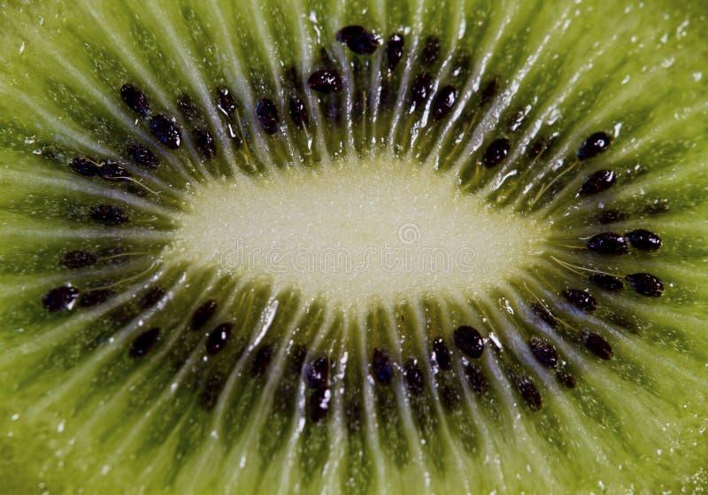 Green fruit kiwi close up , green background. royalty free stock photo