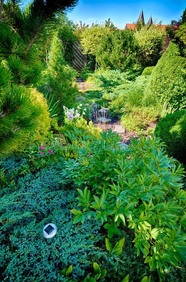 Download Green Garden stock photo. Image of plants, trees, vegetation - 43521424