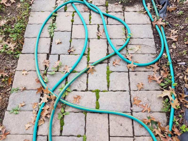 Green garden hose on a stone path with weeds royalty free stock photography