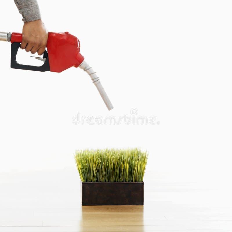 Green gasoline concept stock image