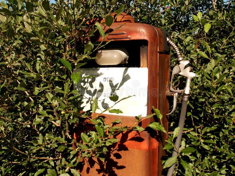 Green gasoline in lofoten. Old gasoline pump surroundend by trees, Lofoten islands stock photos