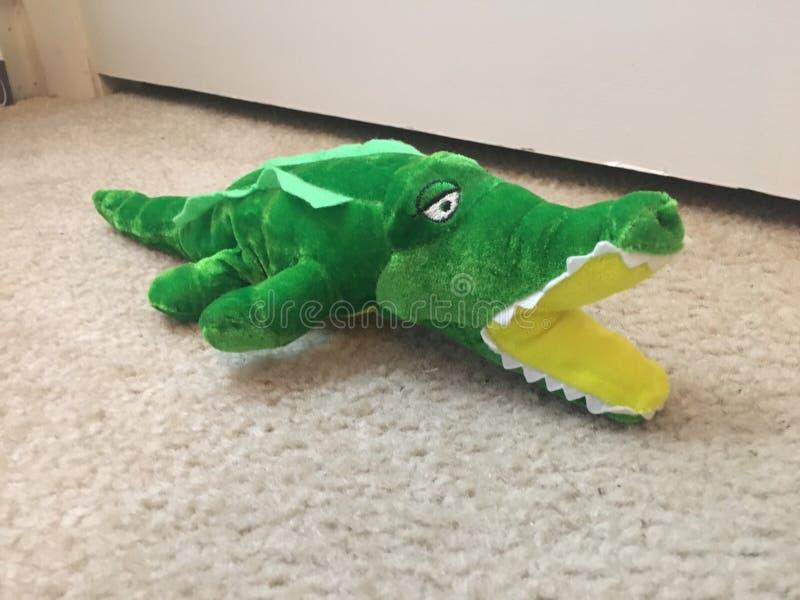 Gator stuffed animal. Green gator lake royalty free stock photo