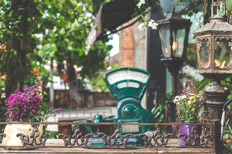 Green Gauge Near Lamps and Plants royalty free stock images