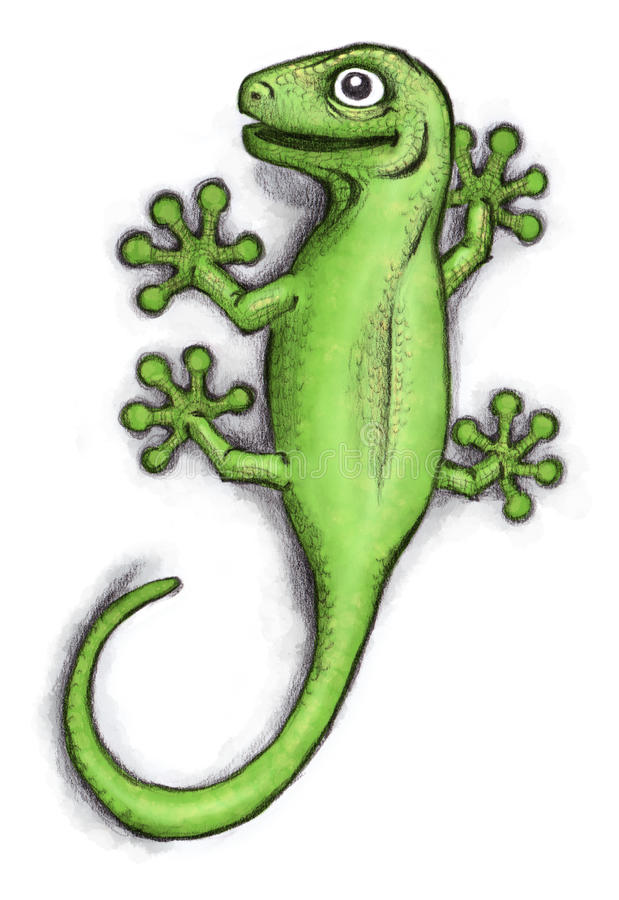 Green Gecko stock photography