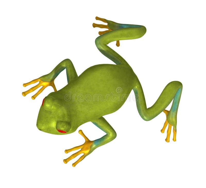 Green Gold Tree Frog 300 Dpi Royalty Free Stock Photography