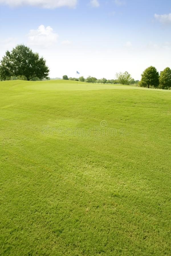 Download Green Golf Grass Landscape In Texas Stock Photo - Image: 14887982