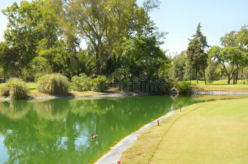 Download Green golf lake stock image. Image of europe, golf, sport - 26795079