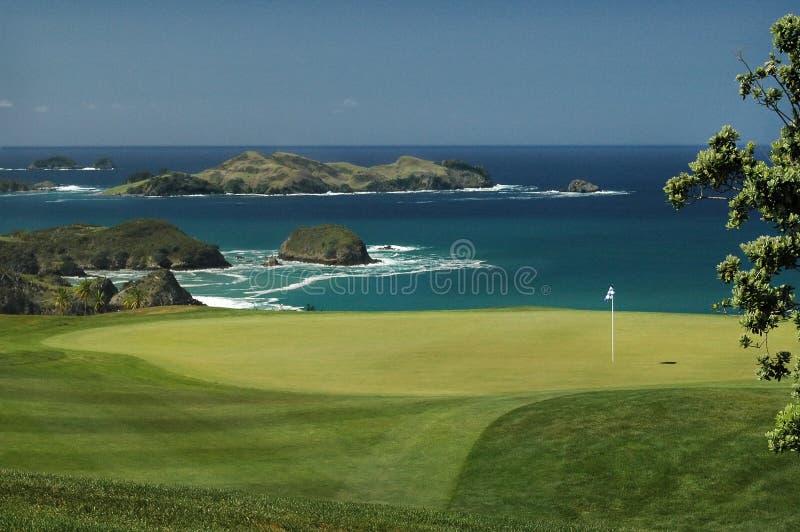 green golfowa obrazy stock