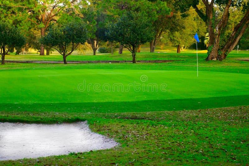 green golfowa zdjęcie royalty free