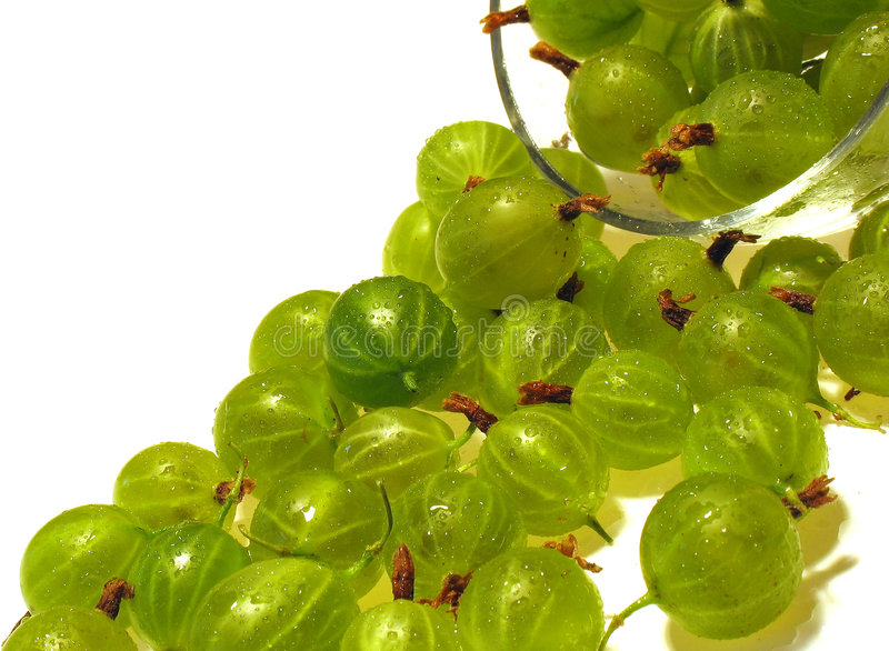 Download Green gooseberry. stock photo. Image of vegetarian, beautiful - 2845710