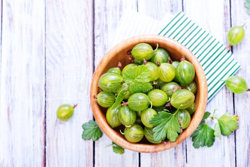 Green gooseberry stock photo
