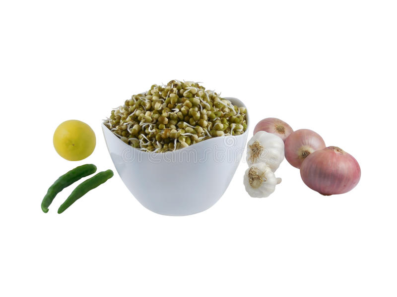 Green Gram Sprouts in a Bowl. Green gram sprouts which is usually consumed with a garnishing of onion, garlic, chilies and with salt and a few drops of lemon royalty free stock photos