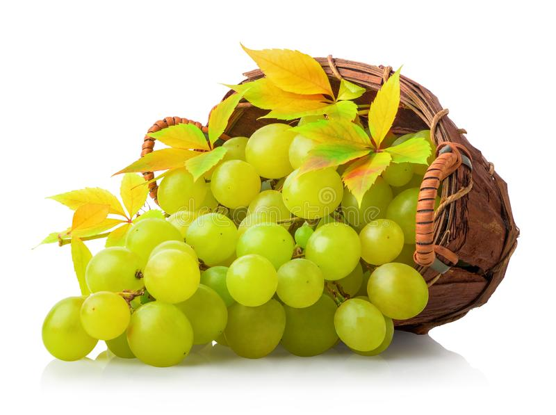 Green grape in basket stock photography