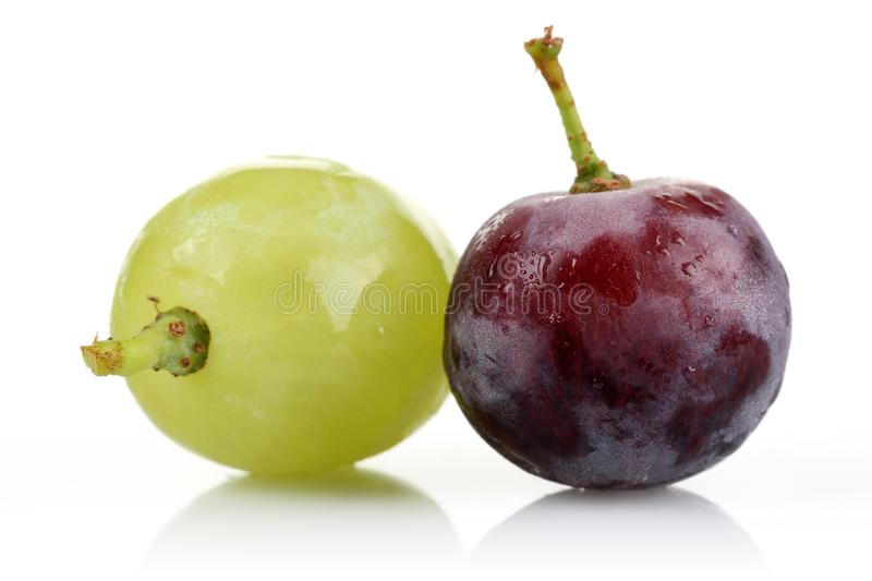 Green grape and black grape stock image