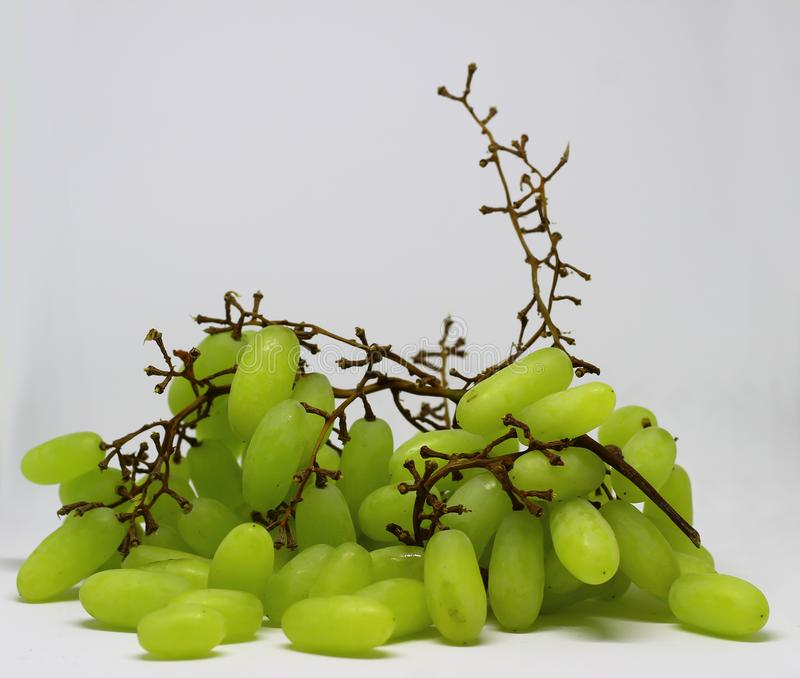Green grape with branches isolated on white. With clipping path. Full depth of field. stock images
