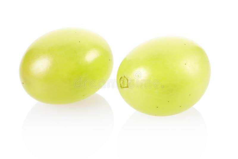 Download Green grape stock photo. Image of food, harvest, juicy - 30246274